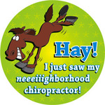 Hay! I Just Saw My Neighborhood Chiropractor!
