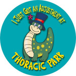 I Just Got An Adjustment At Thoracic Park