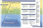 Levels of Chiropractic Care