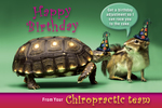 Happy Birthday From Your Chiropractic Team (Tortoise & Chipmunk)
