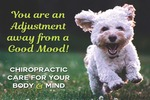 You are an Adjustment away from a Good Mood! *NEW*