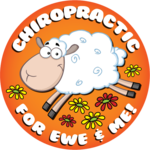 Chiropractic for ewe and me